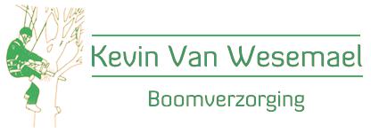 Kevin Van Wesemael